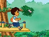 Go Giego Go: Rain Forest Adventure