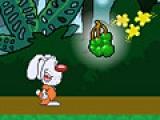 Jungle Eggventure