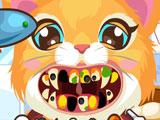 Kitty at the Dentist