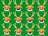 Rudolphs Nose