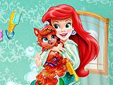Ariel Pet Care