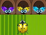 Bugs N' Love