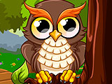 Cute Owl
