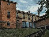 Lonely Escape Asylum