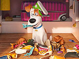The Secret Life of Pets Online