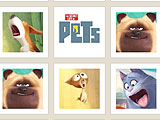 The Secret Life of Pets Memory