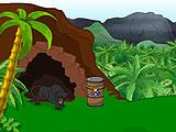 Nature Escape - Jungle