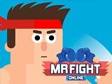 Mr. Fight